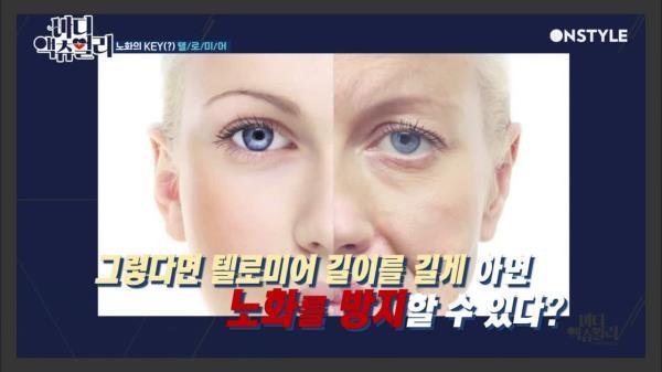 노화와 수명 결정짓는 ′텔로미어′ 염색체란?