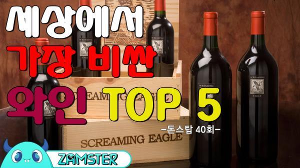 세상에서 가장 비싼 와인 TOP5 [돈스탑 40회] #잼스터