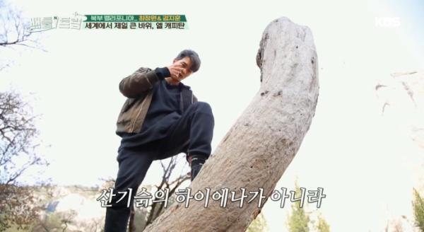 세계에서 제일 큰 바위, 엘 캐피탄