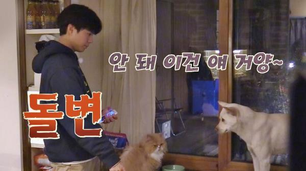 [미공개] 미달이한테 단호한 박보검(!) 카리스마↗↗