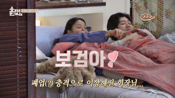 """""""보검아♡"""" 폐업의 충격으로 이상해진 이효리 (헛소리)"""