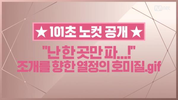 [101초 노컷] '난 한 곳만 파..!' 조개를 향한 열정의 호미질_배진영