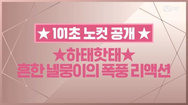 [101초 노컷] ★하태하태★ 흔한 녤뭉이의 폭풍 리액션_강다니엘