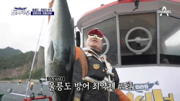 입질 가뭄을 뚫은 노줄무 덕화의 방어 한 마리★ (feat. 골반 미남)