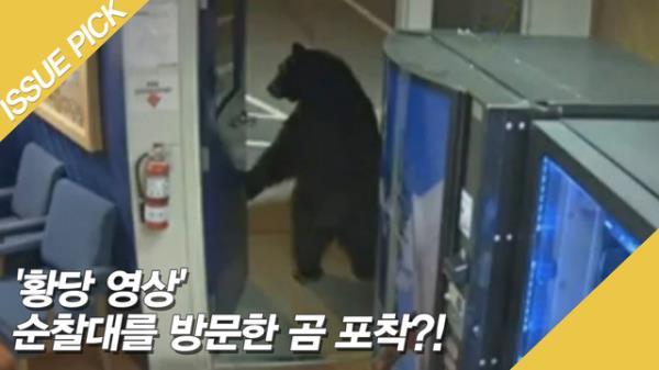 '황당 영상' 순찰대를 방문한 곰 포착?!