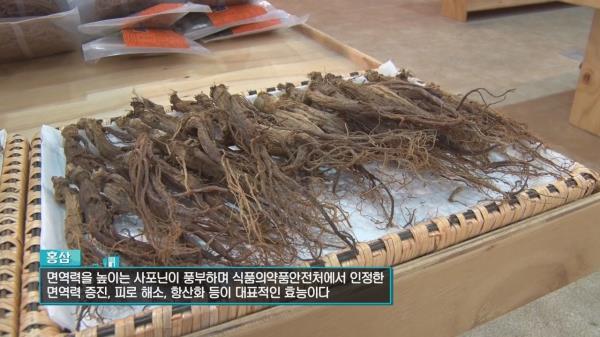 겨울철 건강을 지키는 특효약, 홍삼