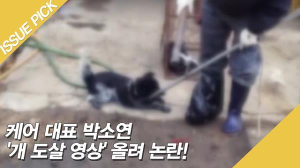 """'개 도살 영상' SNS에 올린 박소연 논란! """"제발 부끄러움을 알아라"""""""