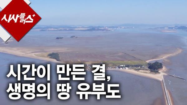 시간이 만든 결, 생명의 땅 유부도 시사플러스 2016 0121