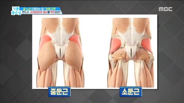 노년 건강은 '엉덩이'가 좌우한다?