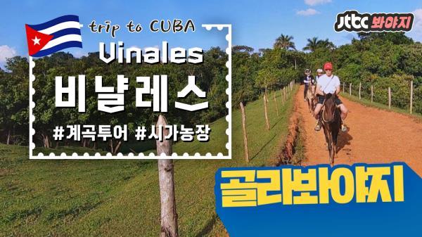 쿠바_비냘레스 편(Cuba_Vinales), 비밀스러운 계곡 투어 #트래블러_JTBC봐야지