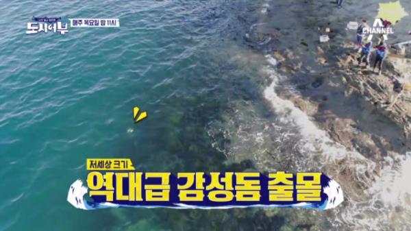 [선공개] 박진철 프로 vs 괴물 감성돔! 과연 승자는?