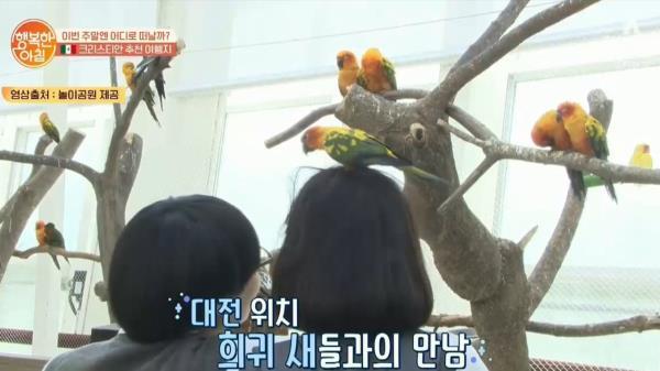 다양한 새들을 만날 수 있는 [대전 유원지] 아이들에게 인기만점♡
