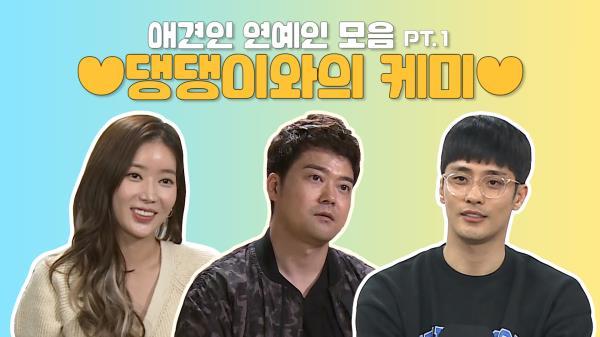 《스페셜》 임수향X전현무X성훈 애견인 무지개 회원들의 댕댕이와 케미 모음! (#아라리 #또또 #호두&마루)