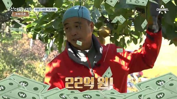 배 농사로 억대 매출! 달콤한 배 맛의 비결은 '무봉지 재배'?!