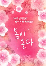 2018 남북평화 협력기원 평양공연