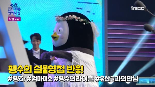 《스페셜뒷캠》 펭수를 대하는 무대 밖 연예인들의 자세! 펭하!!