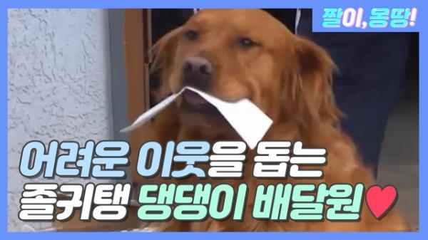 어려운 이웃을 돕는 '졸귀탱' 댕댕 배달원♡