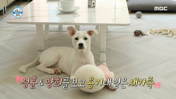 박세리의 곁을 지키는 든든한 가족! 세 식구 육아 돌입~!