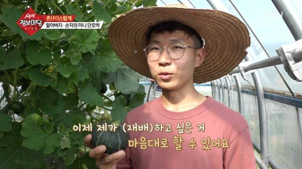 초보 농사꾼의 미니 단호박 농사