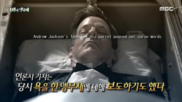 잭슨 대통령이 기르던 욕하는 앵무새가 격리된 이유?!