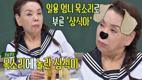김수미 ☆일용 엄니 목소리☆를 못 알아들은 반려견🐶