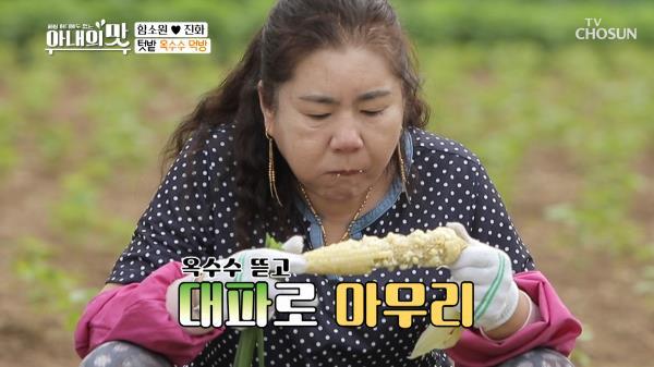 ˹희귀조합˼ 옥수수+대파+고추장 3중 먹방😱