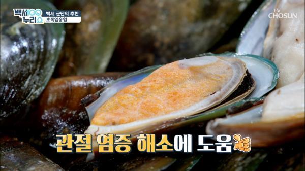 '관절 염증·통증' 타파에 좋은 『초록입홍합』