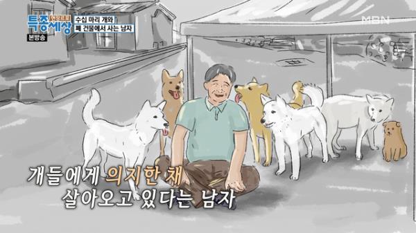 남자가 거리의 개들을 떠나지 못하는 이유!
