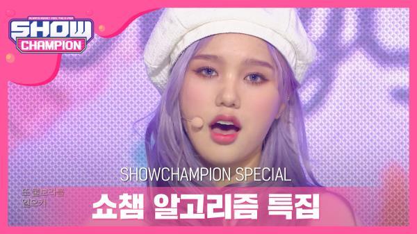 [쇼챔 알고리즘 특집] 오마이걸 - 돌핀 (OH MY GIRL - Dolphin)
