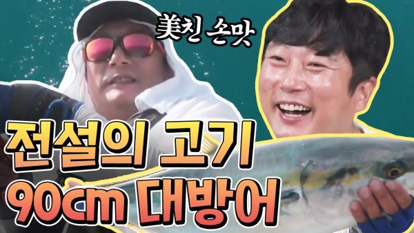 [#도시어부2] 어복형제 이경규X이수근 '역대급 大방어' 잡은 날 ★하이라이트 모음★