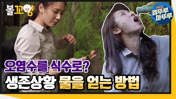 [엠뚜루마뚜루] 오염수를 식수로? 생존상황에서 물을 얻는 방법! #엠뚜루마뚜루 (MBC 200618 방송)