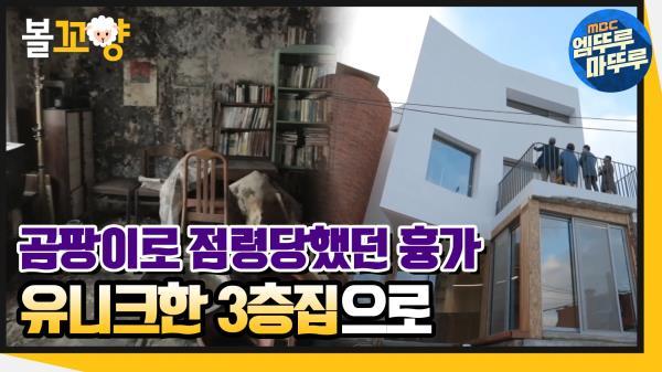 [엠뚜루마뚜루] 곰팡이로 점령당했던 흉가가 유니크한 3층집으로!🏘  #엠뚜루마뚜루 (MBC 201203 방송)