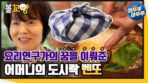 [엠뚜루마뚜루] 추억이 담긴 어머니의 도시락 벤또🍱 #엠뚜루마뚜루 (MBC 201224 방송)