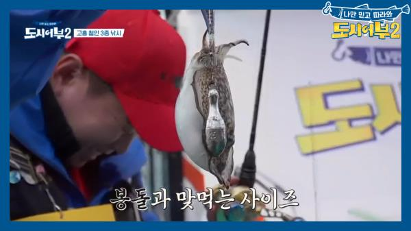 김프로의 쁘띠 갑오징어 열쇠고리, 쫙 펴도 0.5cm(?)