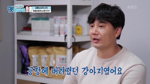유기견에서 광산 김씨 패밀리로 거듭난 멍중이   KBS 210114 방송