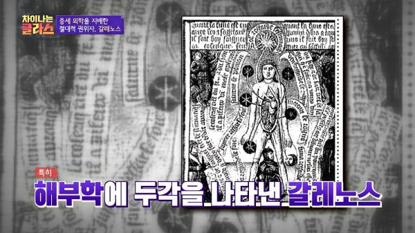 '해부학의 신' 갈레노스의 업적과 그늘📜|JTBC 210114 방송