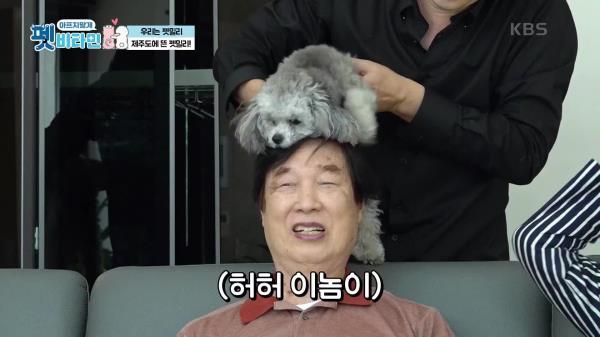 애교 뿜뿜! 온 가족의 연결고리 겨울이♥   KBS 210114 방송