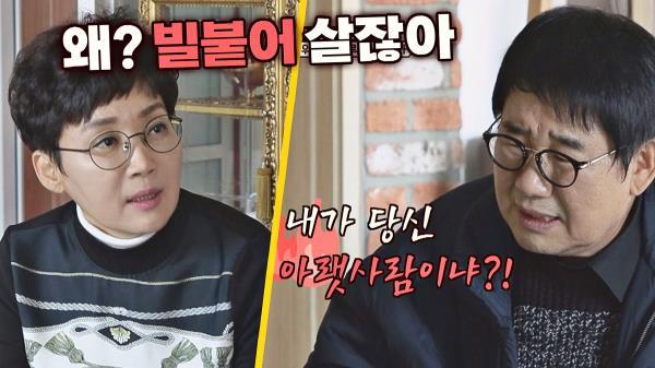 (말잇못..) 팽락부부의 격한 다툼에 눈물바다가 된 스튜디오💧|JTBC 210117 방송