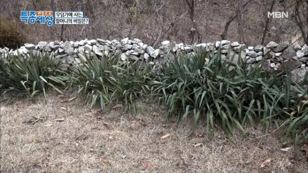 버킹검궁전 안 부러운 무덤가 데코레이션! MBN 210121 방송