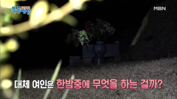 26년째 무덤가에 나타나는 여인? MBN 210121 방송