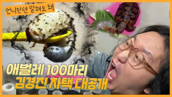 (경악) 장수풍뎅이 애벌레 100마리와 함께사는 김경진♥전수민 집 대공개ㅣ언니한텐말해도돼 EP.13