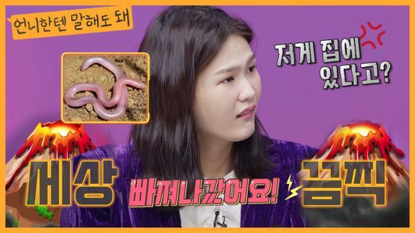잃어버린 뱀이 아직 돌아다니고 있는 김경진네 집...? 으아악ㅣ언니한텐말해도돼 EP.13