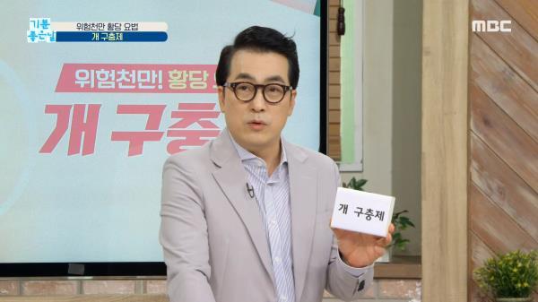 위험천만! 황당 요법 '개 구충제', MBC 210226 방송