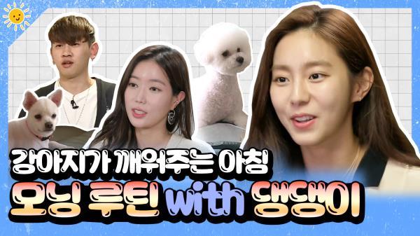 《스페셜》 강아지가 깨워주는 아침🐕☀크러쉬X유이X임수향의 모닝 루틴 with 댕댕이🐶💛, MBC 200625 방송
