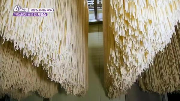 [고향 노포] 1956년에 문을 연 66년 전통의 제면소 | KBS 210406 방송