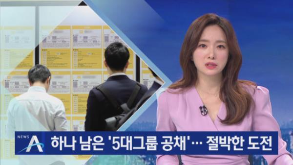 삼성, 5대 그룹 중 유일한 공채…취업준비생들 고심